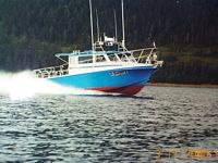 Sanity charters fishing locations valdez ak for Valdez alaska fishing charters