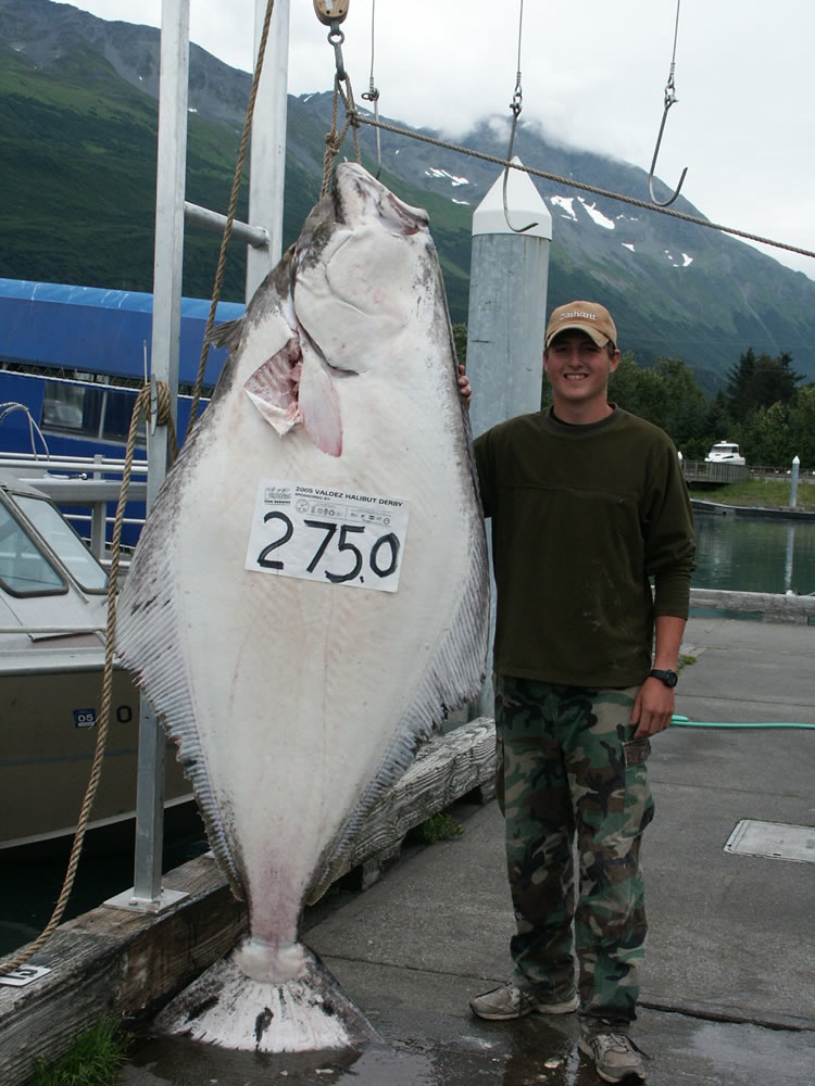 Sanity charters valdez alaska fishing for How to get a fishing job in alaska